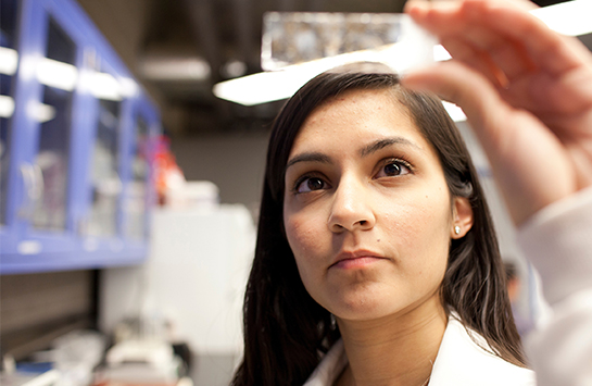 student looking at slide in lab