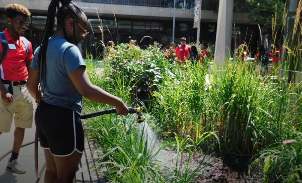 student watering a garden